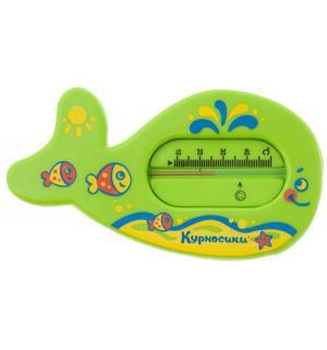 Термометр  Китенок зеленый Курносики
