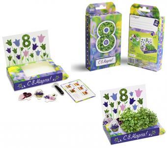 Подарочный набор 8 марта  №3 Колокольчики Happy Plant