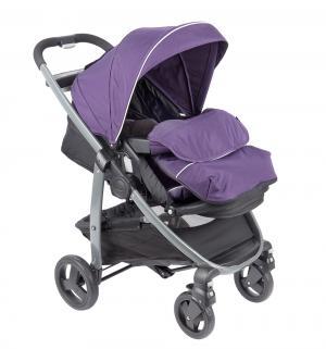 Прогулочная коляска  Modes, цвет: фиолетовый Graco