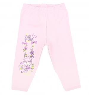Леггинсы  Swing, цвет: розовый Makoma