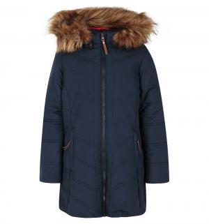 Пальто  Kitte, цвет: синий Luhta