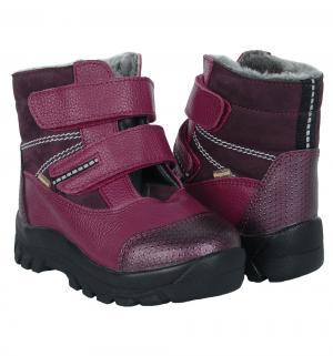 Ботинки , цвет: сиреневый Скороход
