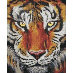 Картина по номерам на подрамнике Тигр 50х40 см Color Kit