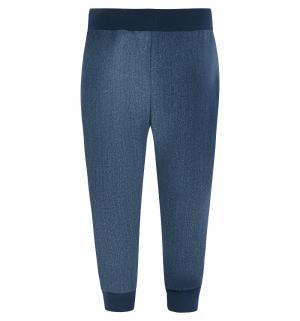 Спортивные брюки , цвет: синий GT