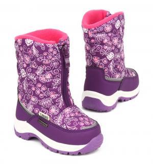 Сапоги , цвет: фиолетовый Twins