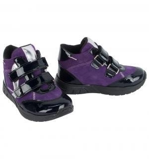 Ботинки , цвет: сиреневый Minimen