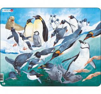 Пазл  Пингвины 50 деталей Larsen