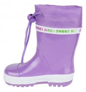 Резиновые сапоги , цвет: фиолетовый Indigo Kids