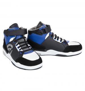 Ботинки , цвет: синий/черный Котофей