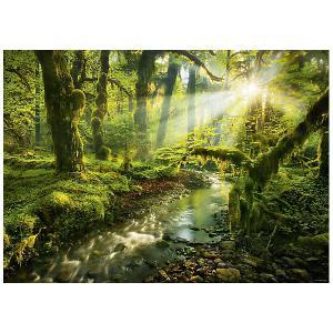 Пазл Heye Nature Заброшенный парк, 1000 деталей