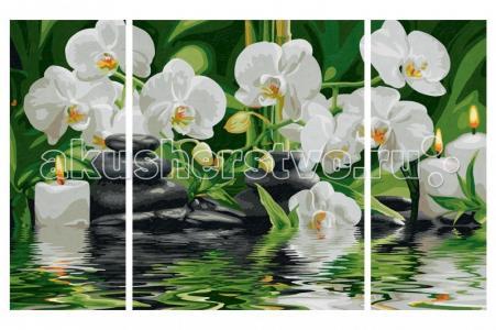 Картина по номерам Триптих Цветы Wellness-Oase 50х80 см Schipper