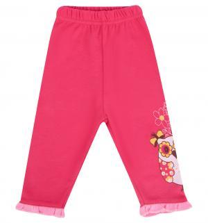 Леггинсы  Зайчик мой, цвет: розовый Pepelino