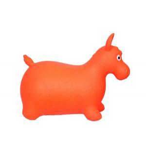 Мяч-прыгун  Лошадь Altacto
